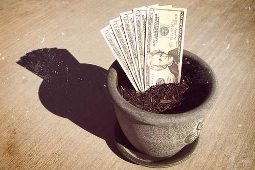 Vintage Grow Your Money
