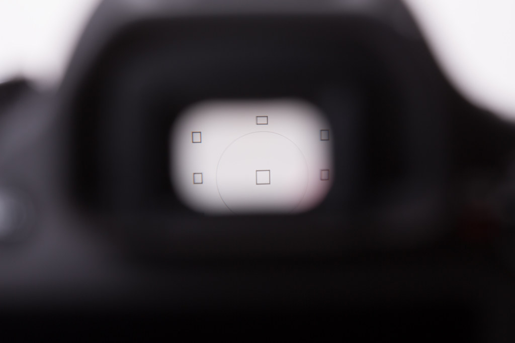 0.006 sec (1/160), f/14.0, 100 mm, EF100mm f/2.8 Macro USM