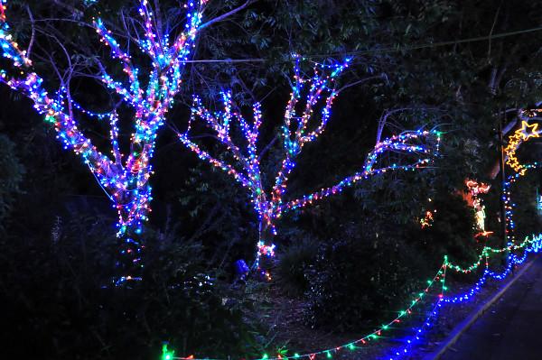 Christmas Wonderland 2012