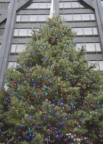 Hancock Christmas Tree