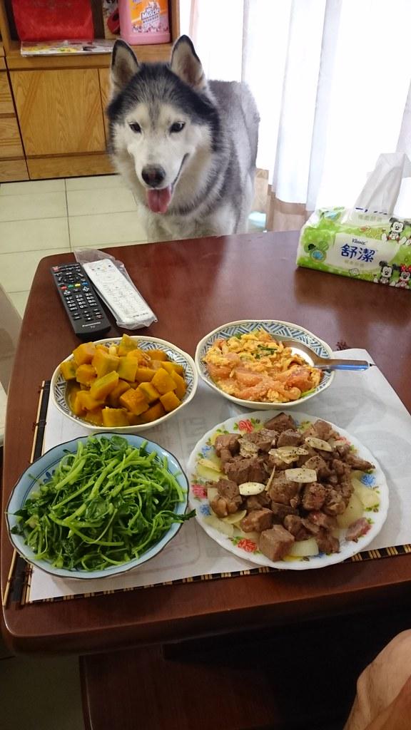 Doggy貪吃狗7桌1