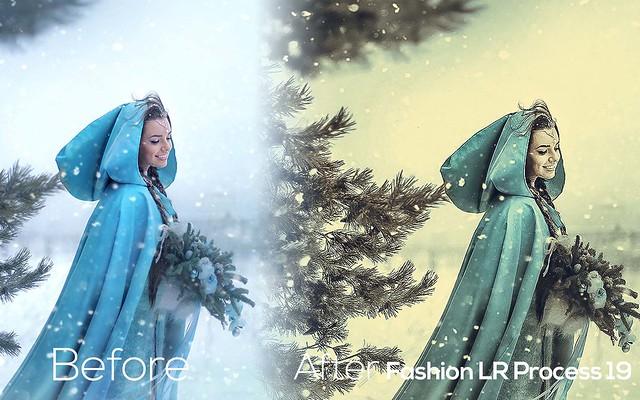 Fashion LR Presets 17