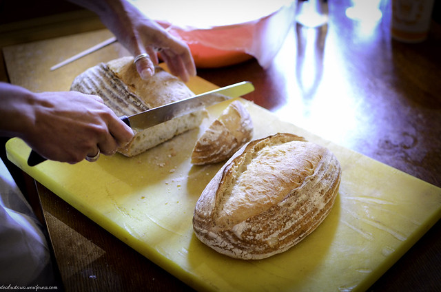 8169097196 bc5d03bf4e z Atelier de paine Timisoara 17 18 noiembrie
