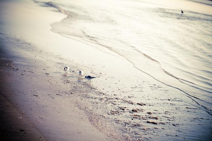 Beach _ 9