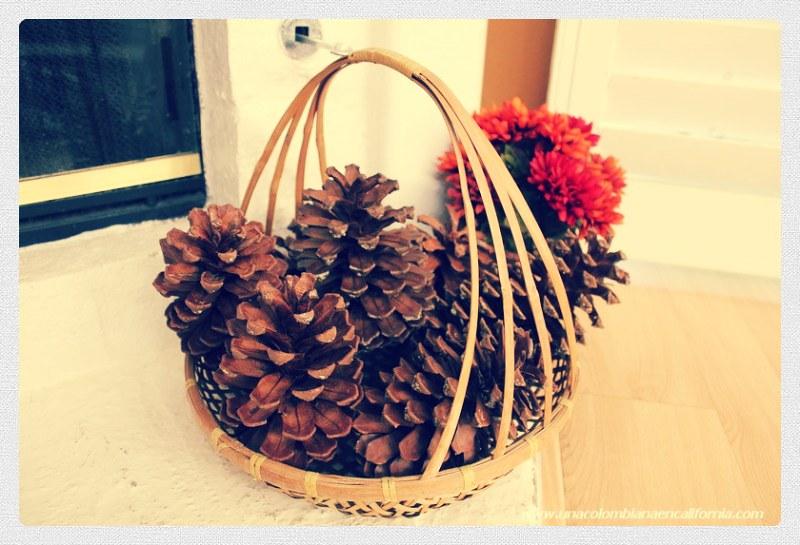 Decorando con pine cones