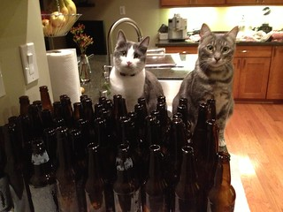 Lotsa Bottles