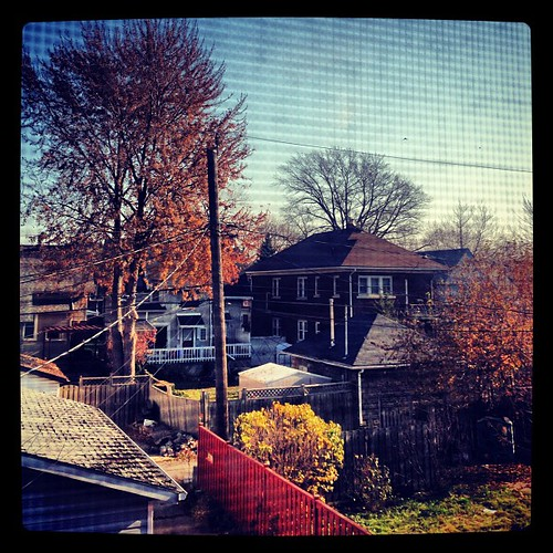 #FMSphotoaday November 16 - The view from your window