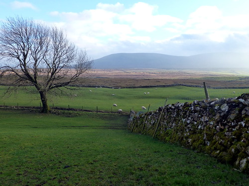 Whernside 030