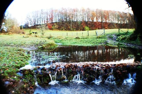 Watery landscape scene