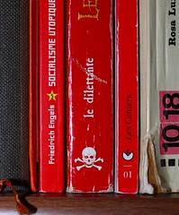 Livres - Une histoire de Pirates (1)