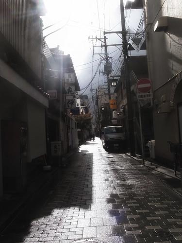 2012.11.21(R0010744_Sunlight