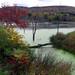 Wetland by wabash100