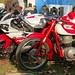 Small photo of Mostra Scambio 2012-11 Novegro 34 Moto Morini