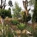 Risheehat's garden