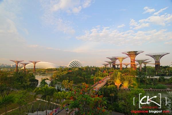 Singapore_0133