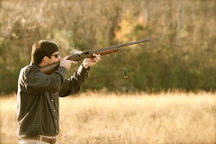 weapon, shooting, clay pigeon shooting, sports, trap shooting, firearm, skeet shooting,
