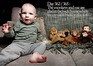 Day 362 / 365 : The monkeys and me are glad to be back home where we can kick back on the sofa...