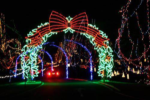 Tilles Park Christmas Lights.Tilles Park Christmas Lights