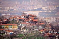 Ankara 82