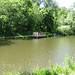 Kids' Fishing Pond