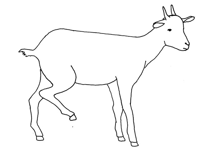 Line Drawing Goat : Line drawing of a lame goat flickr photo sharing