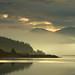 Misty Morning by Ian McClure