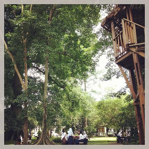 #city #park #bogor Taman Koleksi