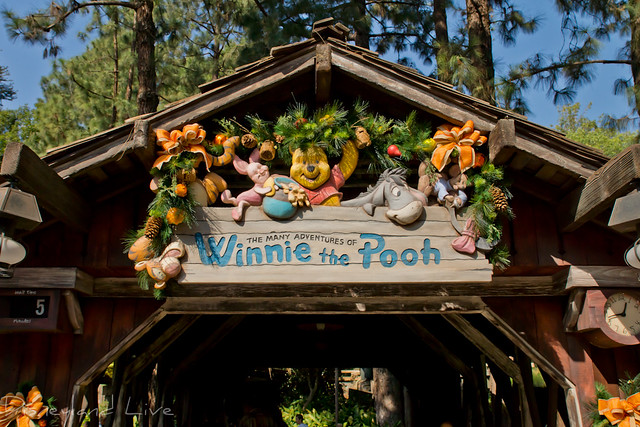 Critter Country Christmas Decorations - 2012