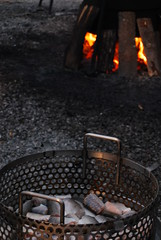 grilling(0.0), iron(1.0), campfire(1.0),