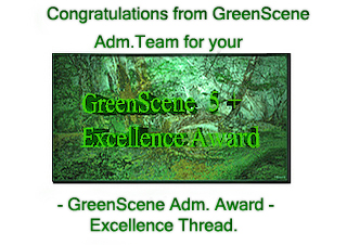 GreenScene Excellence Thread