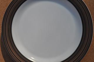 Pyrex Terra Plate