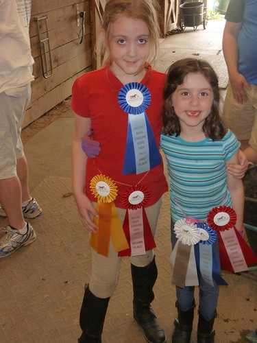 Butterfly and R and their ribbons