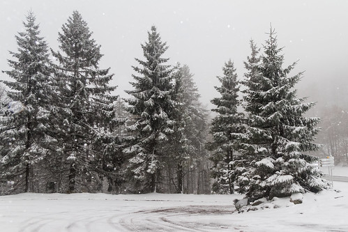Winter in 'Les Vosges' by eosfoto