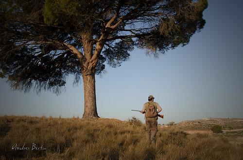 De caza