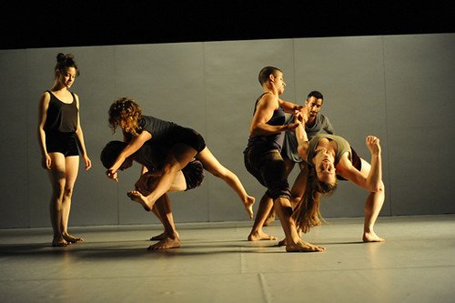 webdice_SADEH21_by_Ohad_Naharin_Photo_Gadi_Dagon_small (3)