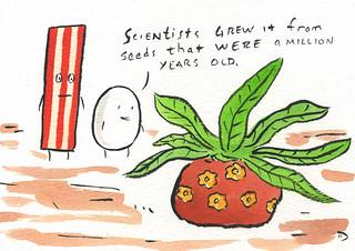 Prehistoric Plant