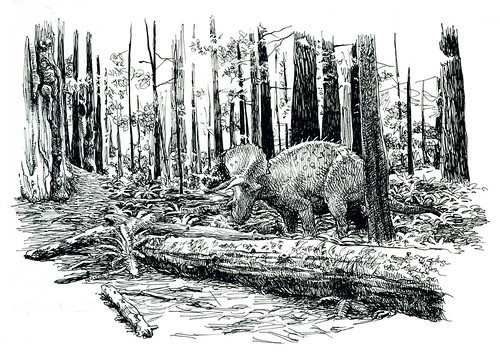 triceratops in a redwood forest
