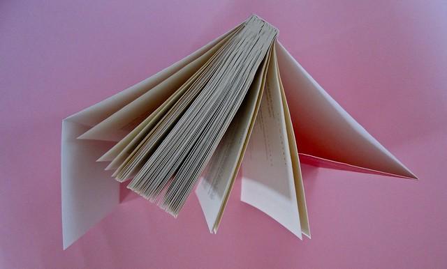 Deborah Willis, Svanire. Del Vecchio editore 2012. Grafica e impaginazione Dario Lucarini. Taglio superiore (part.), 1