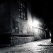 Small photo of Magpie Lane
