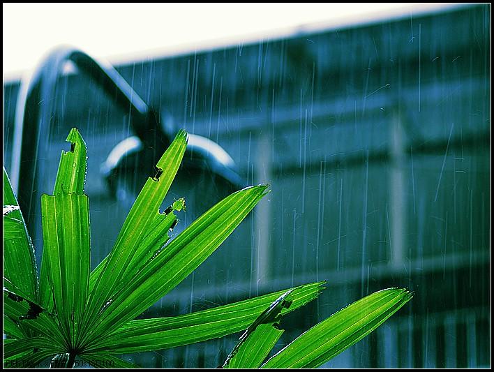 早上下班外頭下雨 [9P]