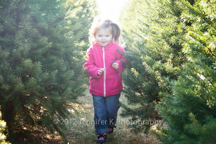 ChristmasTreeFarm12-7809.jpg