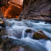 Curves and Cascades ~ Zion Narrows ~{explored}~