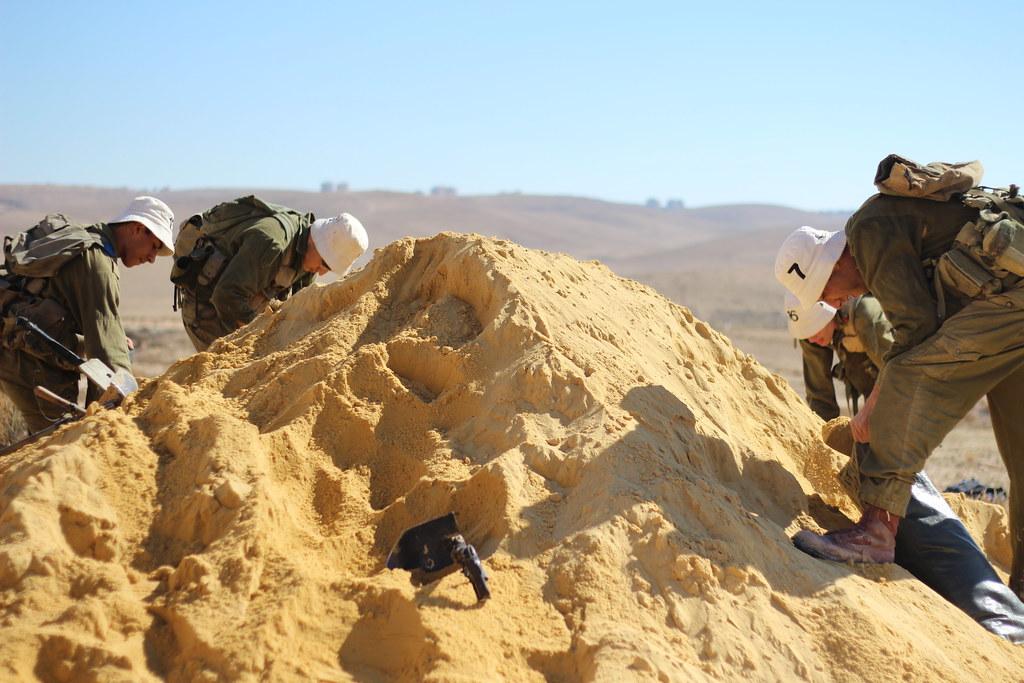 Fuerzas de Defensa de Israel ( צְבָא הַהֲגָנָה לְיִשְׂרָאֵל, Tsva Hahagana LeYisrael) - Página 3 8228572729_b006dca3cf_b