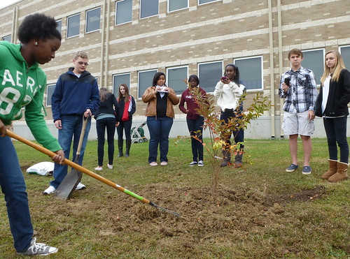 Crepe Myrtle planting, Class of 2016, Caddo Magnet HS, Shreveport by trudeau