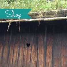 Heist_Shop