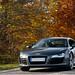 Audi R8 ©Alexandre Prévot