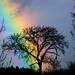 so that's what's at the end of the rainbow... by peet-astn