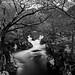 Glen Nevis by amcgdesigns