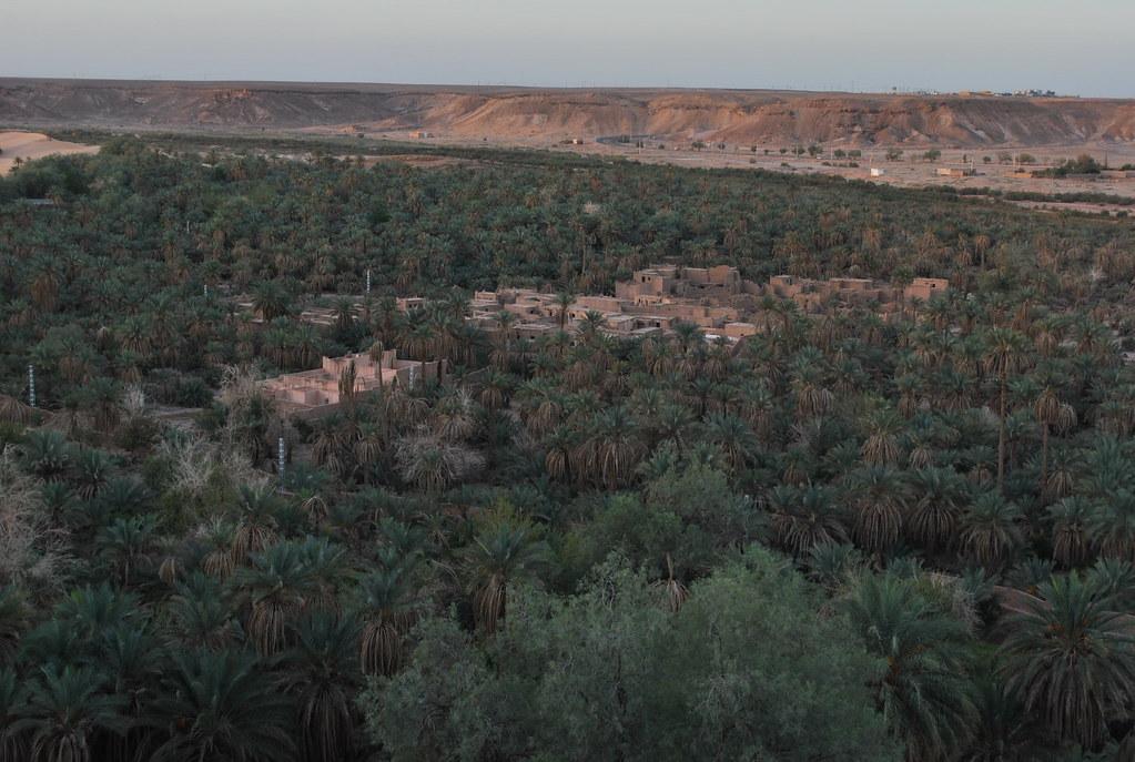 اجمل صحراء في العالم  - صفحة 2 8247453138_3191c62746_b