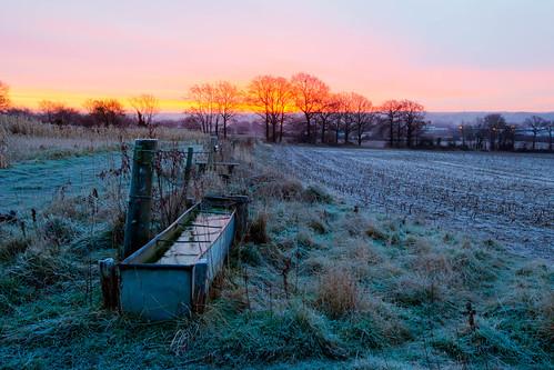 morning water field sunrise frozen berkshire trough colthrop